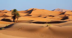 search photos category travel u003e africa u003e morocco