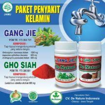 de nature indonesia toko obat de nature resmi jual produk resmi