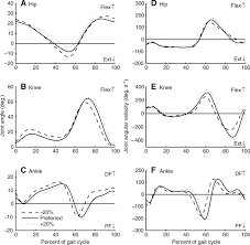 mechanical power and efficiency of level walking with different