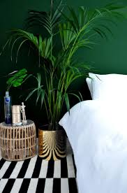 dark green walls u0026 a bold stripe rug image via the desi wonder
