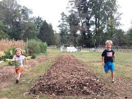 How To Start A Garden Bed Sheet Mulching Tutorial How To Start A Garden Without Tilling Or