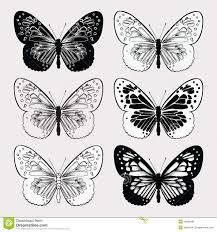 mystical butterflies