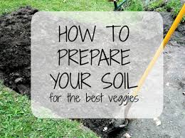 preparing soil for vegetable garden halflifetr info