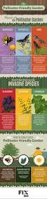 native plants for birds native plants and the pollinator garden fix com