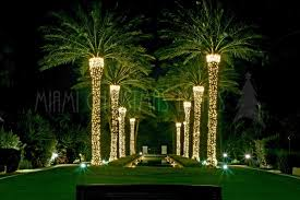 gallery of lights for palm trees fabulous homes