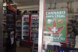 bureau de tabac a vendre dossier du cannabis bio en bas de chez soi c est possible