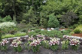 Toledo Botanical Garden by Gardening Is A Fun Hobby For The Walinskis The Blade