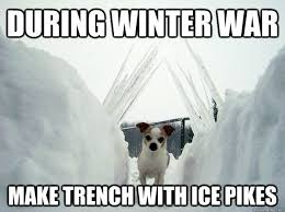 Memes About Winter - funny winter dog memes funny stuff pinterest dog memes and memes