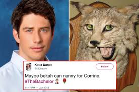 The Bachelor Memes - the 21 funniest tweets about last night s bachelor premiere