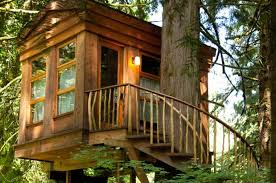 file tree house jpg tree house designs inside interior tree house designs inside bgbc co