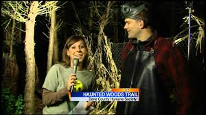 haunted woods trail youtube