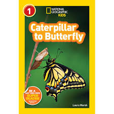 national geographic readers caterpillar to butterfly national