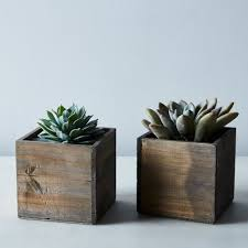 diy succulent and wood planter set of 2 on food52