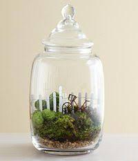 the 25 best mini terrarium ideas on pinterest terrarium