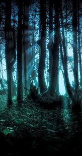 happy halloween lights walk in the dark forest happy halloween night