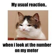 Diabetes Cat Meme - 182 best type 1 diabetes images on pinterest diabetes awareness