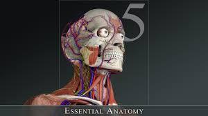 essential anatomy 3 apk تحميل و تتبيث essential anatomy 5 لنظام الماك