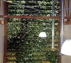 crafty indoor living wall kits diy herb garden uk canada