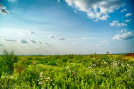 in caddo county land for sale