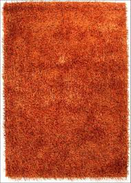 brown shag rug confetti brown and white 5 ft x 8 ft shag area rug