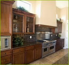 home depot home kitchen design 21 amazing cheap kitchen cabinets home depot model kitchen