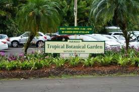 Parking Near Botanical Gardens Parking Lot Across From The Gardens Picture Of Hawaii Tropical