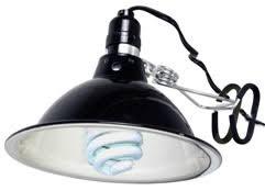 Discount Light Bulbs Fluorescent Lighting Compact Fluorescent Grow Light Fixture