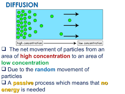 nursing resume exles images of liquids with particles png the net movement of particles from an area of high concentration to