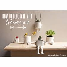 decorating with plants a dose of simple