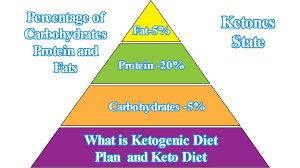 keto diet meal plan for weight loss and ketogenic diet meal plan