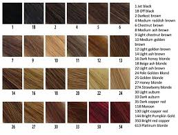 hair color chart hair color chart helps you to pick the best color