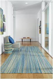 Capel Outdoor Rugs Hton Seaglass Blue Contemporary Braids By Capel Rugs Blue