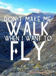 Best Travel Quotes in s Don t make me walk when I want to