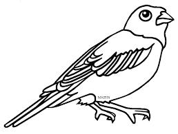 20 maryland state bird and flower kansas state nickname the