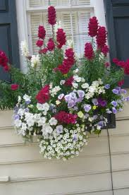 best 25 window box flowers ideas on pinterest flower boxes