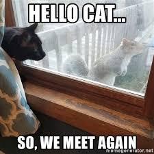 Exles Of Memes - cat boat meme best boat 2018