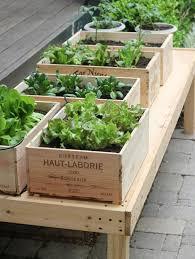 the 25 best vegetable planters ideas on pinterest vegetable