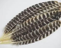 turkey feather headband turkey feathers etsy