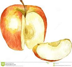 drawn apple cut apple pencil and in color drawn apple cut apple