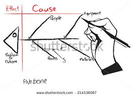 fishbone diagram stock images royalty free images u0026 vectors