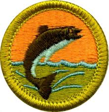 208 best badges images on pinterest badges merit badge and scouting