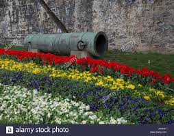 Ottoman Cannon Tulip Garden Historical Ottoman Cannon Used At The Conquest Of