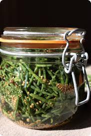 cuisiner salicorne salicorne au vinaigre plantes médicinales vinaigre