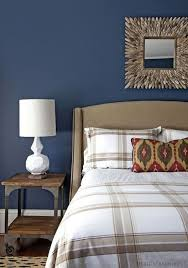 azure blue wall color with white tartan bedding set for eclectic