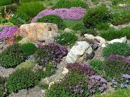 Sloped Backyard Landscape Ideas Landscaping For Sloping Backyards Colorful Hillside Rock Garden