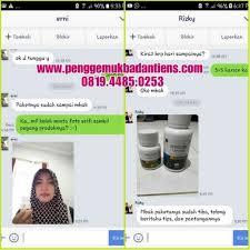 Obat Zinc review obat zinc spirulina capsules penggemuk dan penambah berat