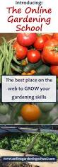 14512 best winter crops images on pinterest gardening gardening