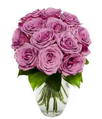 how much does a dozen roses cost one dozen purple roses at from you flowers