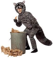 raccoon costume halloween costumes other items