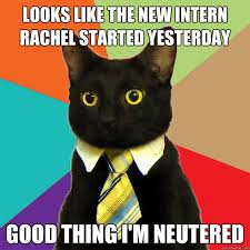 Intern Meme - looks like the new intern cat meme cat planet cat planet
